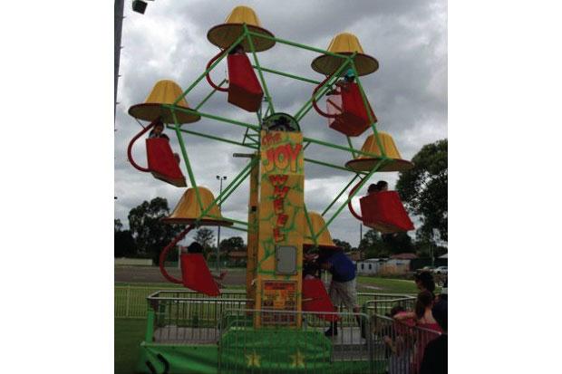Mini Ferris Wheel ride